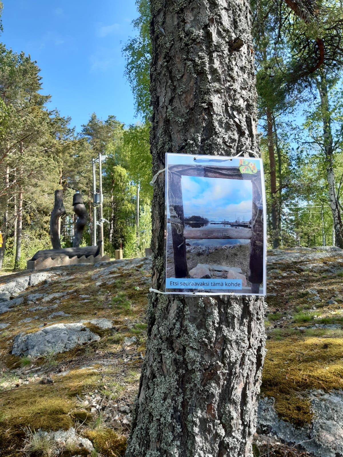 Kuvassa puuhun kiinnitetty valokuva.